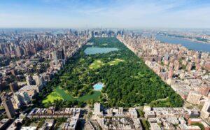 1 New York City Break MT