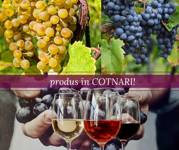 vinuri-nobile-romanesti-in-uk_1374303_4